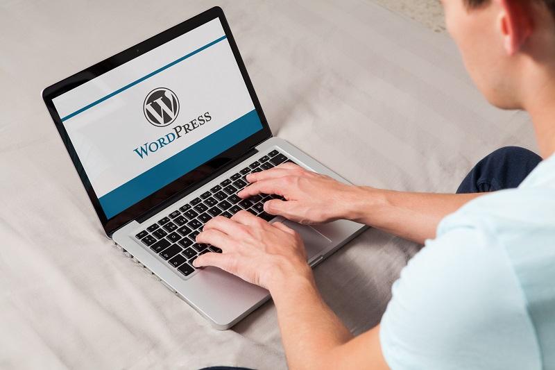 Vælg det rette WordPress tema til din hjemmeside